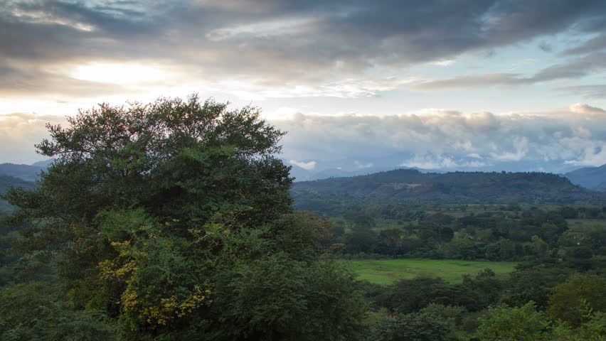 Honduras Tree and Valley Overlook with Clouds Time Lapse, near Santa Barbara