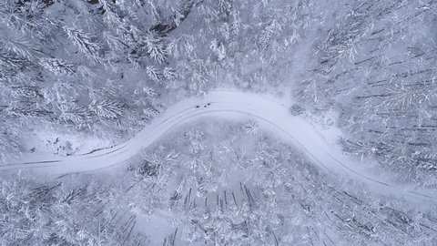 Aerial - Top down shot of two people ski walking on snowy road and one of them using ski sled for heavy load