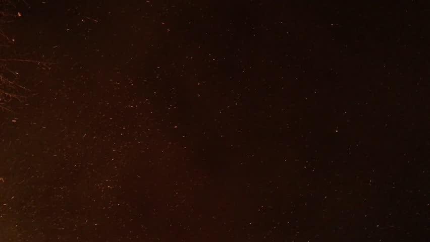 Burning Embers from a Garden Bonfire float through an overcast Autumn Night