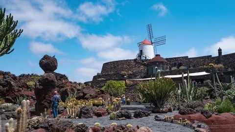LANZAROTE, SPAIN - CIRCA JUNE, 2017: Tropical cactus garden in Guatiza village, Lanzarote, Canary Islands, Spain. Time lapse footage.