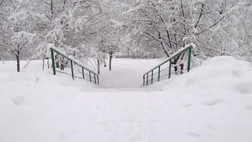 Heavy snow falling in a forest in winter time, stairs step down