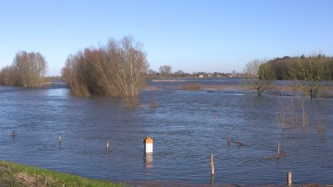 rising water level river IJssel, flooded trees in river landscape. Village of Fortmond at the other side THE NETHERLANDS - JANUARY 7, 2018