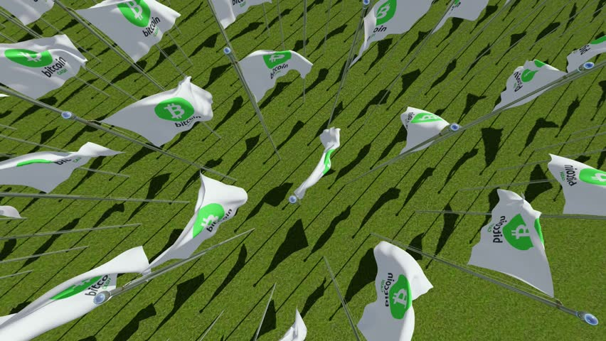 Flags with Bit crypto currency coin cash sign on green field. Three dimensional rendering 3D animation | Shutterstock HD Video #1007483686