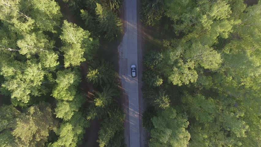 Panoramic Aerial view on forest. Road from above. Video taken using drone. Top view on Trees. Way among trees #1007637076