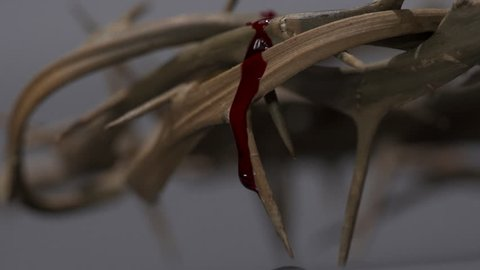 Blood of Jesus Drips down from a Crown of Thorns for Good Friday