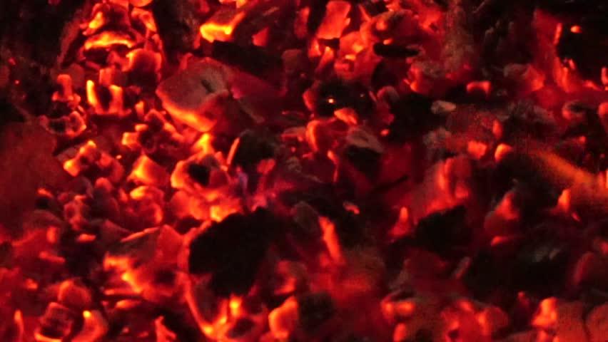 Bonfire outdoors close up | Shutterstock HD Video #1008556186