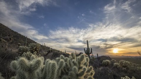 Time lapse video that moves by cholla cactus to reveal the setting sun. Cloud movement, saguaro cactus and palo verde trees are visible. Shot in the Tucson Mountains, Arizona.