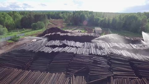 Cut down trees on the territory of the sawmill, top view