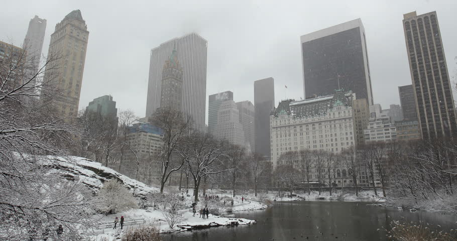 New York City Central Park in snow | Shutterstock HD Video #1008879686