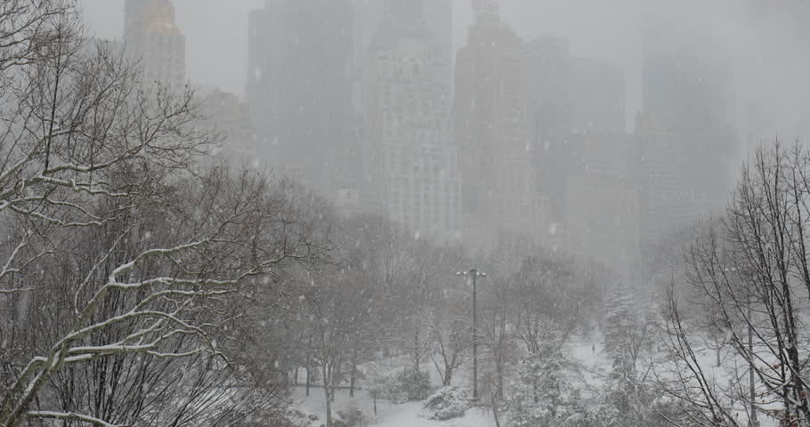 New York City Central Park in snow | Shutterstock HD Video #1008879716
