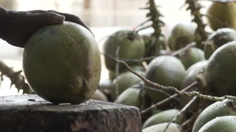 A man peeling a fresh coconut with the support of a wooden chunk and coconuts in the background.