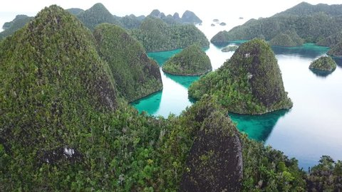 Limestone islands, surrounded by coral reefs, are found in an idyllic lagoon in Wayag, Raja Ampat, Indonesia. This unique, equatorial region is best known for its vast array of marine biodiversity.
