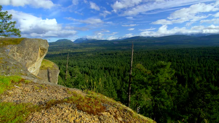 Vancouver Island Cliff Over Forest by Aerial Drone