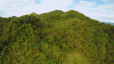 Philippine nature with hills. Bohol Island. Aerial view.