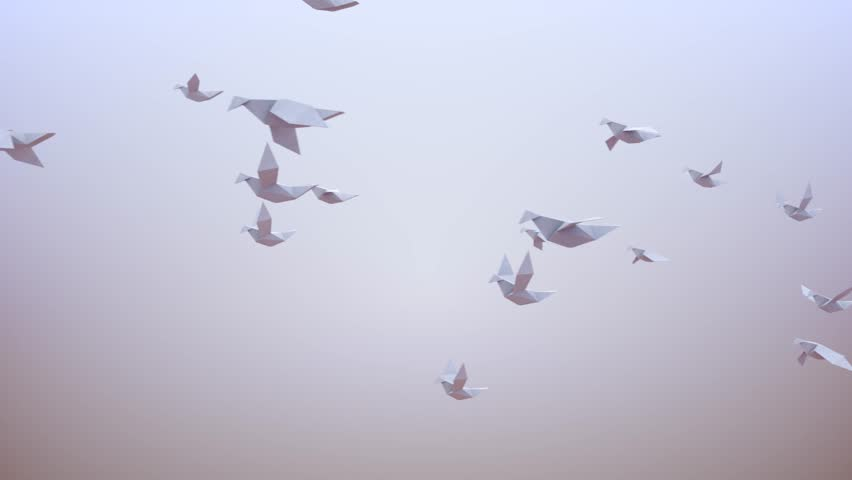 Free Flock Stock Video Footage - (292 Free Downloads)