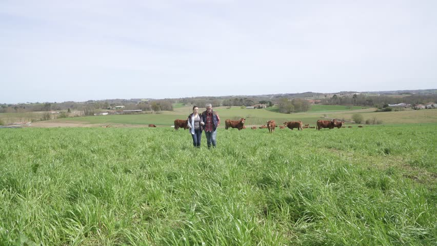 Farmers walking in field | Shutterstock HD Video #1010236316