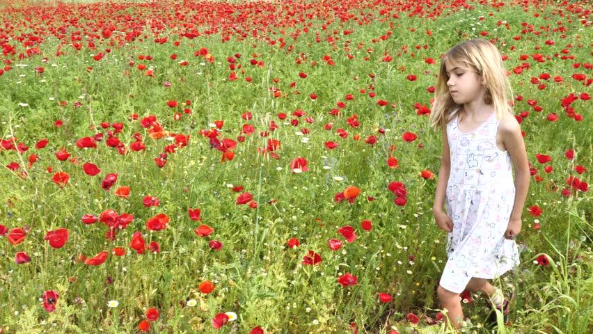 Little girl playing in red poppy flower field green grass | Shutterstock HD Video #1010397116