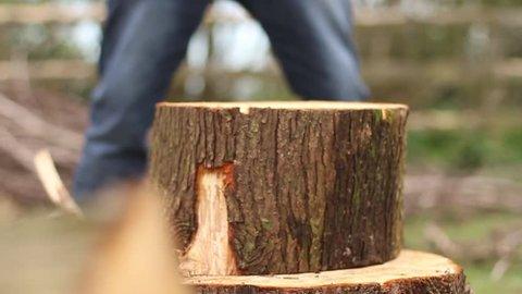 Lumberjack chopping wood.