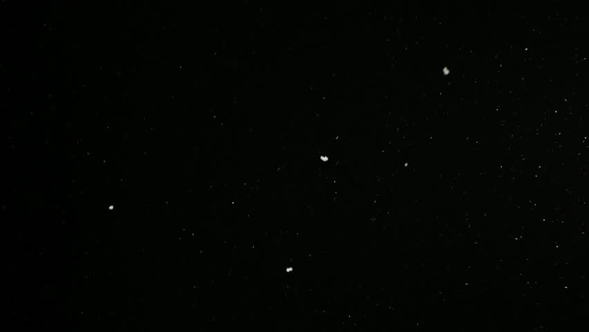 Snowing with Tiny Snowflakes Isolated on the Black Background on the Loop. Bokeh white Particles Fall. Overlay Modes. Shot on RED EPIC-W 8K Helium Cinema Camera.