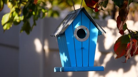 Blue birdhouse hanging from a tree