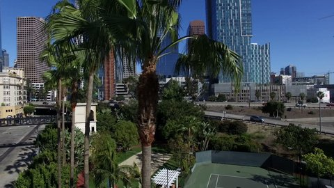Drone shot from palm trees to sunny Los Angeles skyline