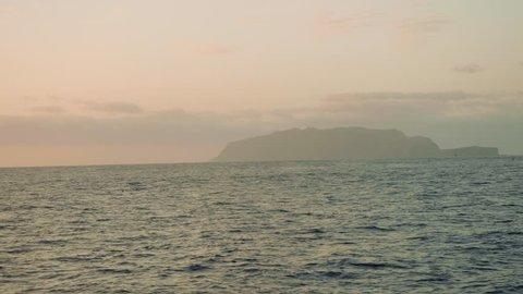 Birds fly above atlantic ocean near Deserta Grande catching fish to eat