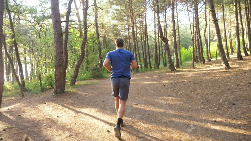 man running away on a trail in the sunny summer forest. motivation for sports activity outdoors, training and exercising in beautiful nature. solar glare, slow-motion 4k, steadicam shot #1011160166