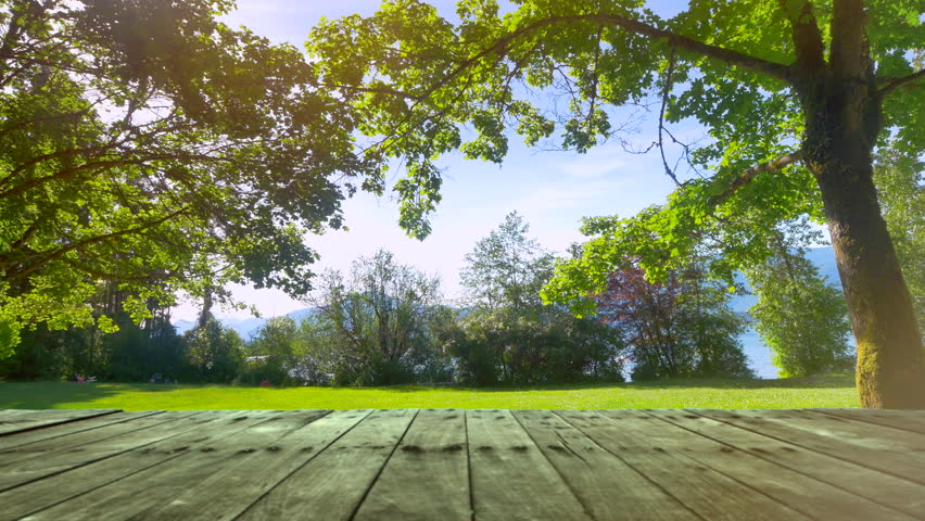 Picnic Green Park Garden Grass Nature Outdoor Nature Table City Background