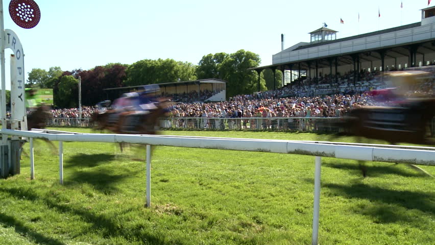 Horse race action