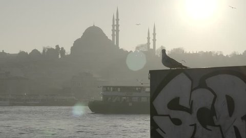 istanbul cityscape. Seagull, ferryboat  and mosque silhouette  in sunset