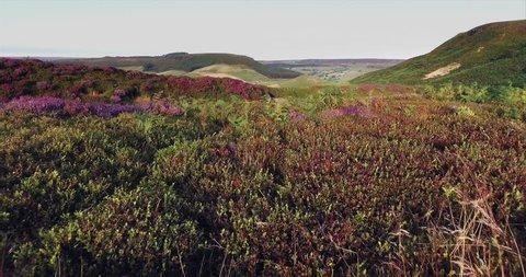 North Yorks Moors National Park, Yorkshire, England :