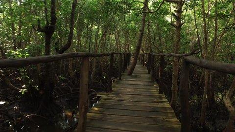 Zanzibar Jozani Forest Chwaka Bay National Park Tanzania.