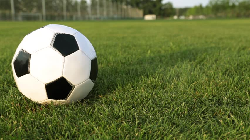 Soccer ball on a green lawn. Football ball on the green grass. #1011955316