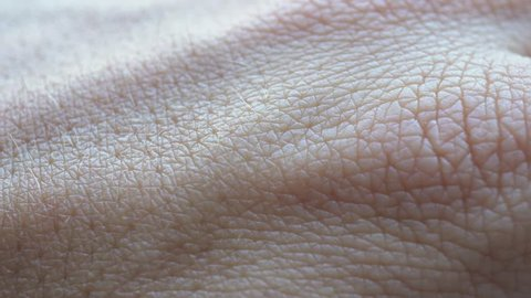 4k Skin Macro