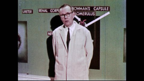 1960s: Man stands in front of chalkboard with labeled diagram of kidney structure, gestures to diagram and speaks.