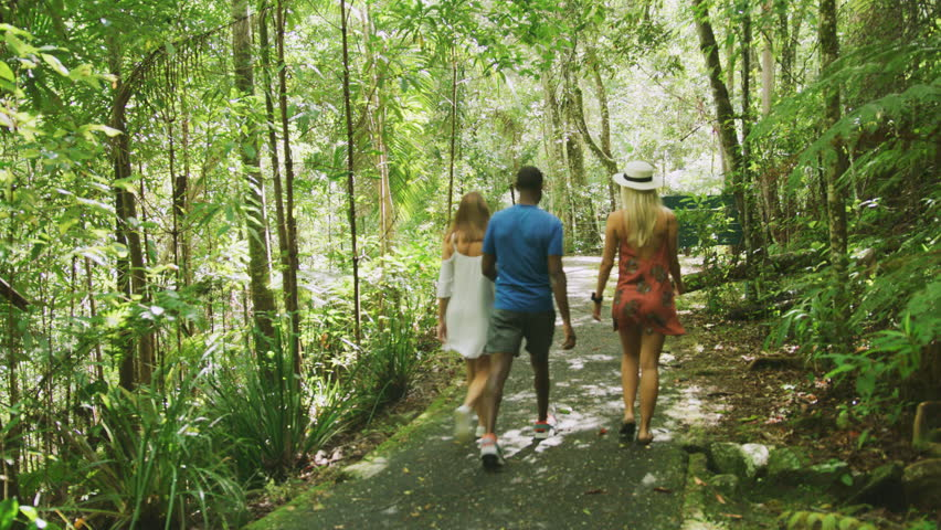 Three friends walking together through rainforest. Shot with a RED camera. 4k footage.