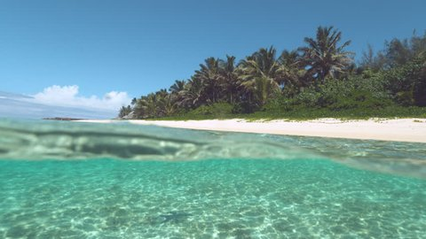 SLOW MOTION, HALF UNDERWATER Lonely dark starfish sitting on the sandy bottom of the glassy ocean near beautiful exotic island. Picturesque shot of empty white sand beach and glimmering sea in summer.