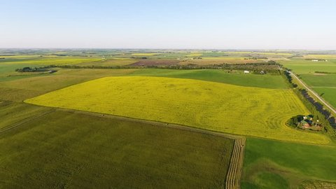Aerial of Prairie Land, Canola Field, Farming in the Summer, Canada