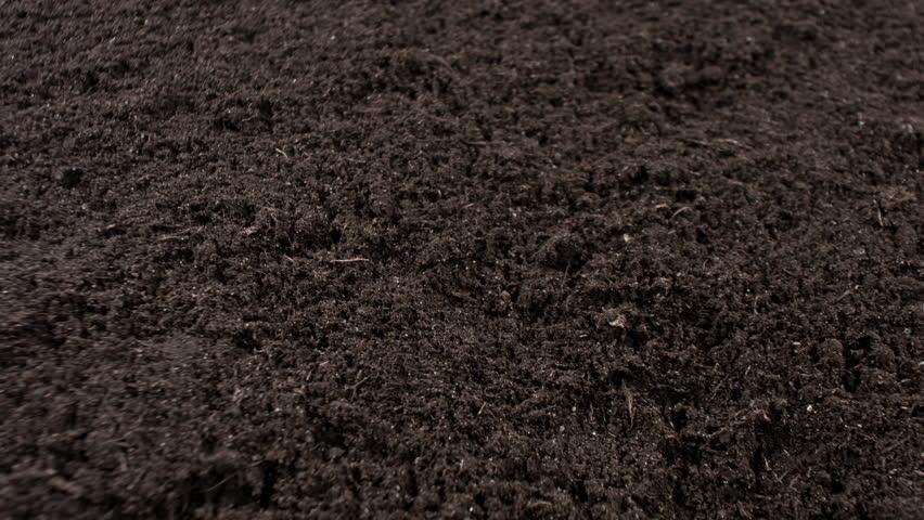 Black Garden Ground 4k Stock Footage Video 10125746 Shutterstock