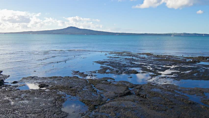 Mission Bay beach with Rangitoto Island Auckland, New Zealand | Shutterstock HD Video #1012634126