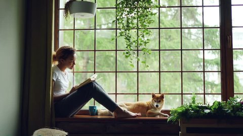 Charming female student African American girl is reading book sitting on windowsill near lovely pet dog lying beside her. Home, hobby and animals concept.