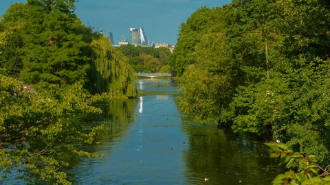 Slow telephoto shot of the lush and vibrant St James Park in London, England, UK on summer day with Whitehall in the background