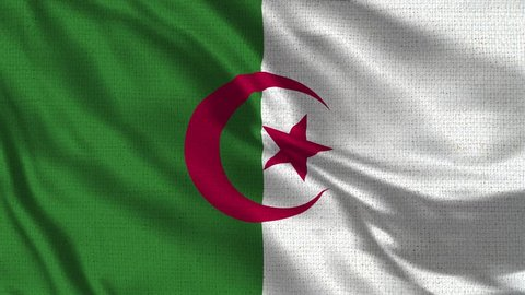 Algeria Flag Loop - Realistic 4K - 60 fps flag of the Algeria waving in the wind. Seamless loop with highly detailed fabric texture. Loop ready in 4k resolution
