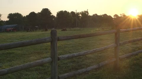 Farm fence seperating two fields at sunrise on a small local organic farm.
