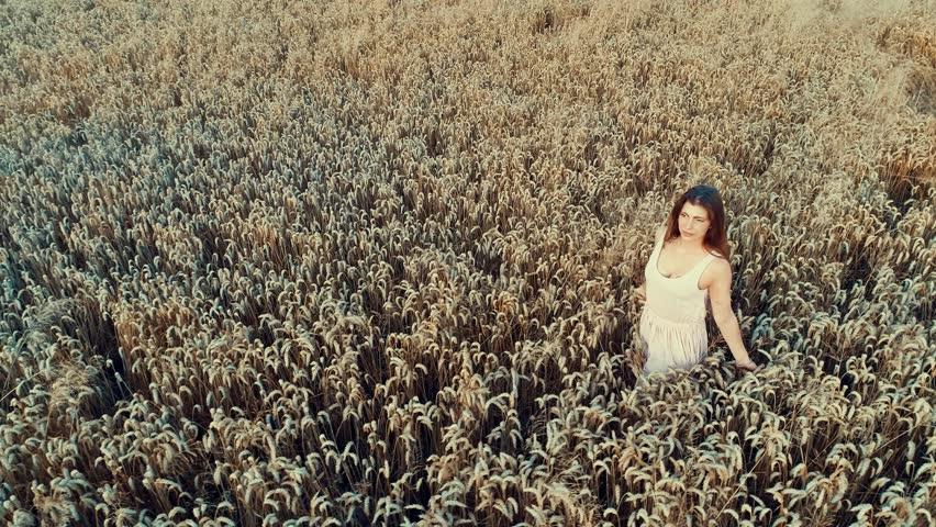 4K footage of beautiful redhead walking through wheat field having fun | Shutterstock HD Video #1013789096