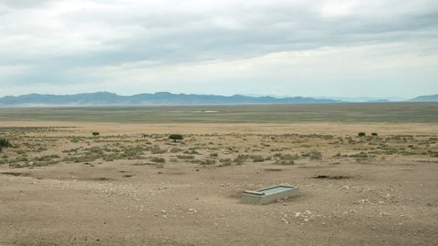 Time lapse of wild horse moving through the dry desert to a watering hole in the West Desert of Utah.