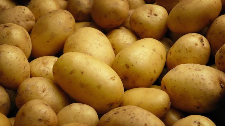 Potato Pile Moving Shot | Shutterstock HD Video #1013920376