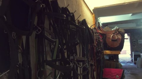 Stockroom with saddles and equestrian equipment