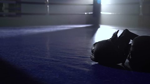 Boxing gloves lie on the floor of the ring. Close up