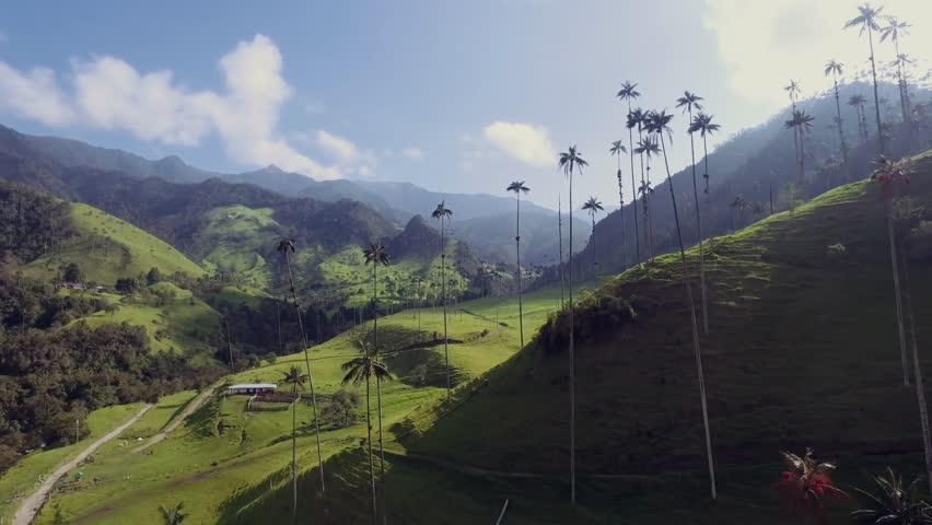 Aerial Valle de Cocora Quindio Colombia 06 | Shutterstock HD Video #1014681656